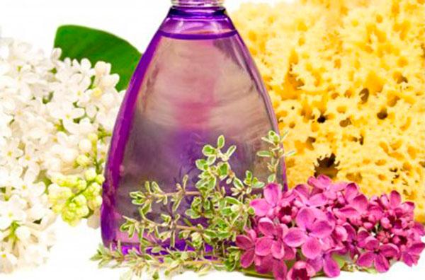 Atitudes simples que deixam qualquer dia mais feliz: sinta os cheiros