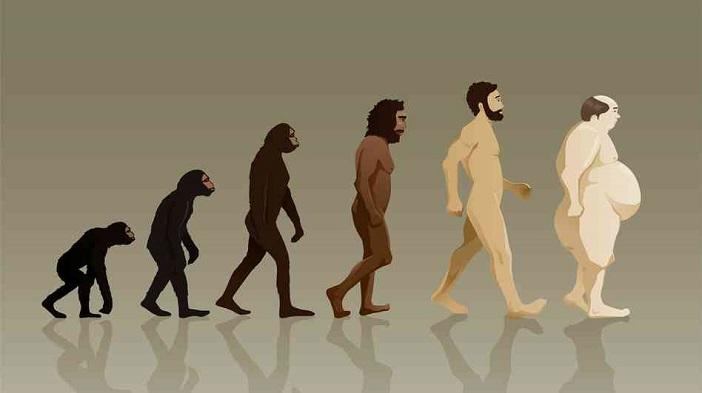 evolução de darwin